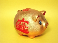 金進寶豬 Golden lucky pig
