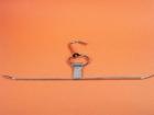 叉燒環 S/S T shape BBQ hanger